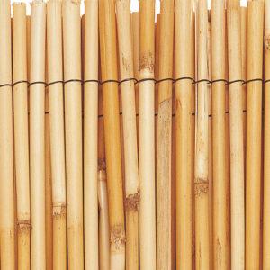 Caniçado Bambu